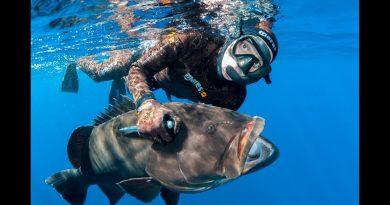 Permiso Deportivo de Pesca Subacuática INSOPESCA
